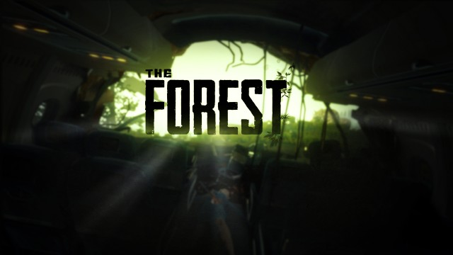 The Forest: Parádní survive skopičina
